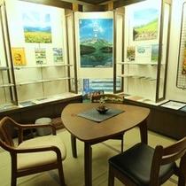 ロビー横の観光情報スペース。各方面のお役立ち情報を揃えております