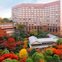紅葉の頃には庭園の木々が様々に色づきます