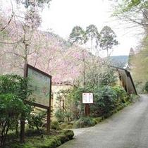 ●散策路入り口と太郎庵