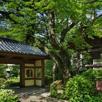 ■約20,000m2の自然豊かな日本庭園