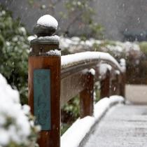 日本庭園(冬)さくら橋