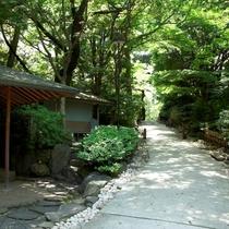 ■日本庭園 夏