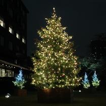 日本庭園のクリスマスイルミネーション