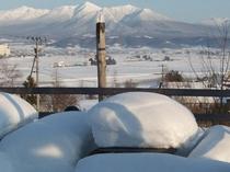 テラスの上に積もった雪の厚さ