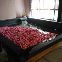 母の日当日はカーネーション風呂!温泉でゆったりと。