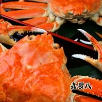 ズワイ蟹をたっぷり召し上がれ!