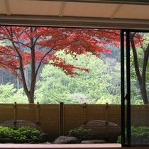 庭園付特別室(紅葉)