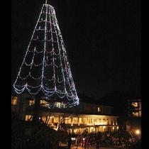 クリスマスツリー点灯式の様子