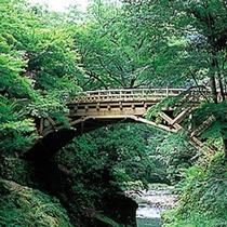 初夏のこおろぎ橋