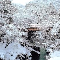 冬のこおろぎ橋