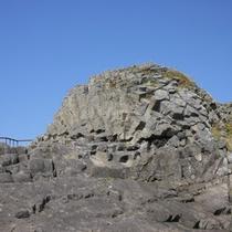 *花咲灯台・車石/国の天然記念物に指定されている車石。直径は約6mもあります!