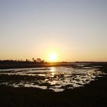 *春国岱/美しい夕陽を望むことができます。