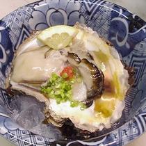 *【料理一例】新鮮な岩牡蠣はそのままが美味しい♪