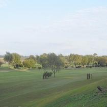 *【利根川ビュー】近隣のゴルフ場越しですが、利根川を望めます。