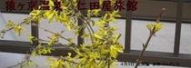 メルマガ用 2010年4月10日配信