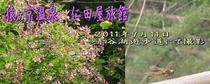 メルマガ用 2011年9月16日配信