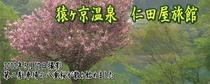 メルマガ用 2012年5月18日配信