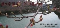 メルマガ用 2010年4月16日配信
