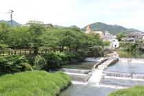 橋から眺める嬉野川