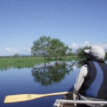 *カヌー(初夏)/6月頃は新緑が最も綺麗な時期。野鳥の繁殖シーズンでもあります。