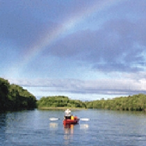 *カヌー(夏)/運が良ければ釧路川越しに虹がかかる絶景もお楽しみいただけます♪