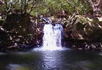 男淵女淵の滝