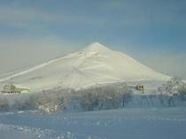 niseko winter -7