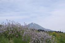 磐梯山【春】Ⅱ