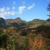 秋の金時山