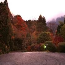 秋の庭園風景