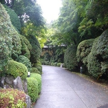 敷地内の道