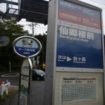 新宿、横浜、羽田空港も直行!