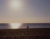 七里御浜のつり
