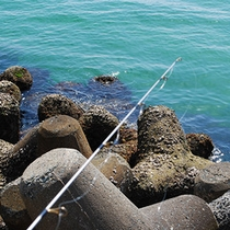 ◇伊良湖港