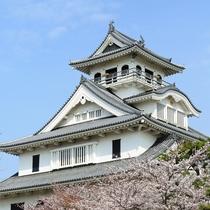 長浜城 桜