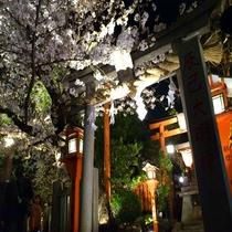 ■辰巳神社 夜桜