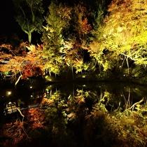■高台寺ライトアップ 紅葉