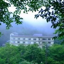 渓谷の隠れ家的一軒宿。広い敷地には渓流、渓谷、歌碑、ガーデン、お堂、隠し湯など