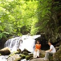 蓼科の名所大滝 当館から歩いて15分 デートで訪れてもらいたい【自然体験】【探検】