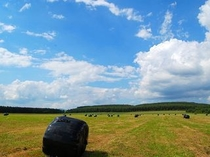 牧草ロールと青空