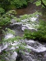 養老の滝の周辺。