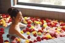 女性バラ風呂