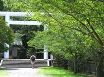 安房神社参道