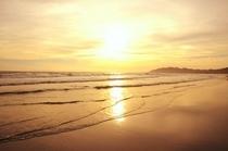 平砂浦海岸砂浜