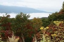 施設からの眺望(紅葉と雲海)