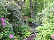緑とお花がいっぱいの中庭のデッキ