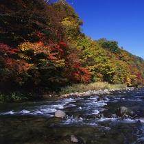 *【周辺観光】紅葉の舟原