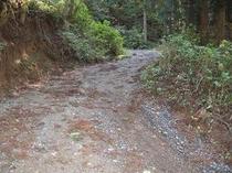 後半の砂利道