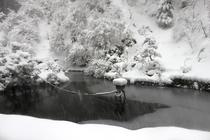 2016年1月18日初雪池
