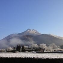 冬の朝の由布岳